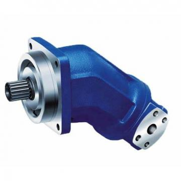 Sauer/ Rexroth/Kawasaki/Linde PV21/PV22/PV23 /A4V/A10V/K3V112/K3V63 Pump