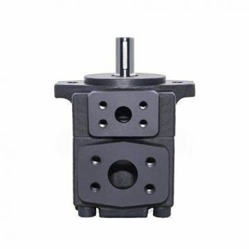 Yuken PV2r12-6-26-F-Reaa-40 13 Hydraulic Double Vane Pump with Good Quality