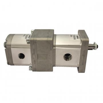 Uchida Companies Atos Fast Delivery Hydraulic Pumps Gear Pump