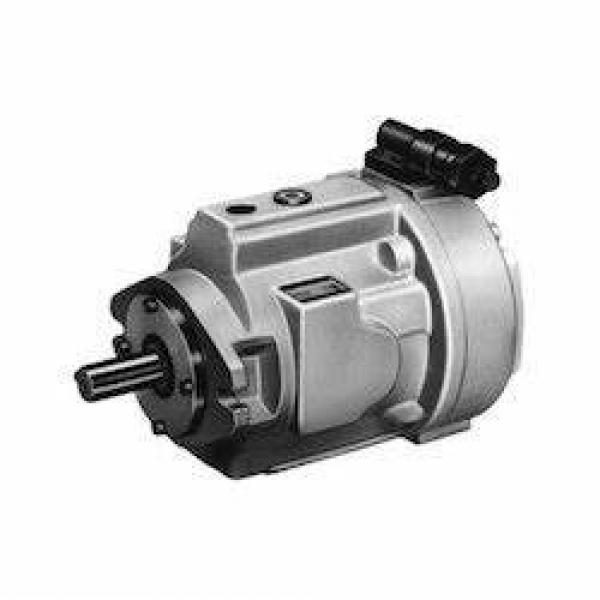 Original YUKEN Double Vane Pump made in JAPAN available with HINLOON in Stock #1 image