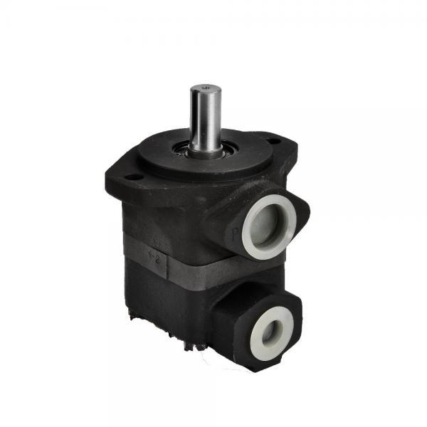 Parker Commercial P75 P76 Gear Pump #1 image