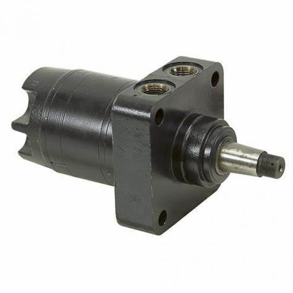 Hydraulic Motor Omp 50 Omp80 Omp100 Omp125 Omp160 Omp200 Omp250 #1 image
